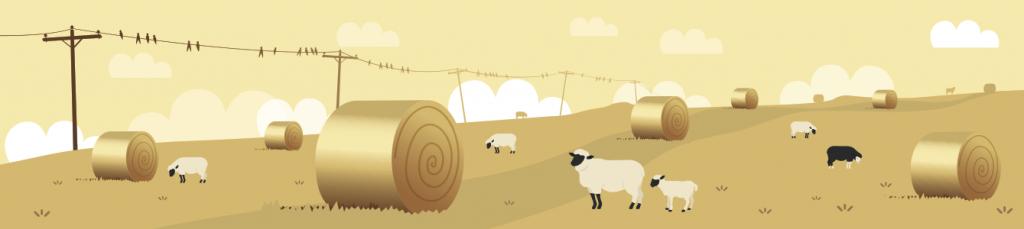 illie_landscape_sheep